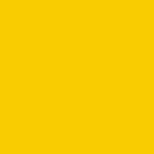 Image MD-15 yellow broom