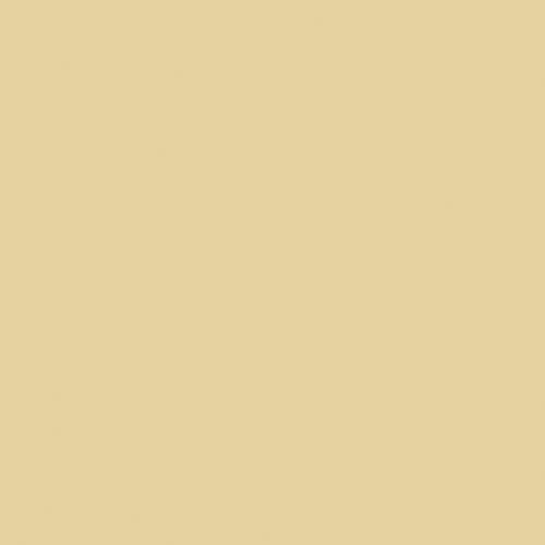 Image RAL-1000 Green beige