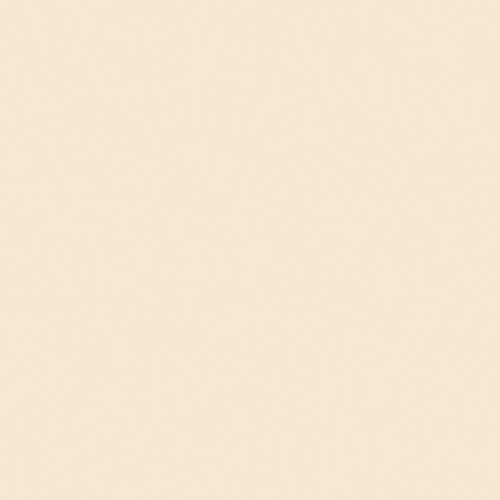 Image RAL-1015 Light ivory