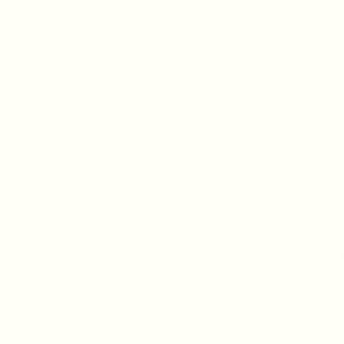 Image RAL-9016 White