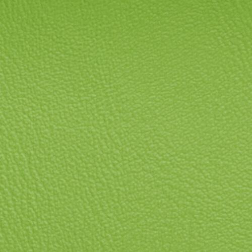 Image PS-KL16 Apfelgrün